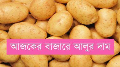 Potato Price In Bangladesh